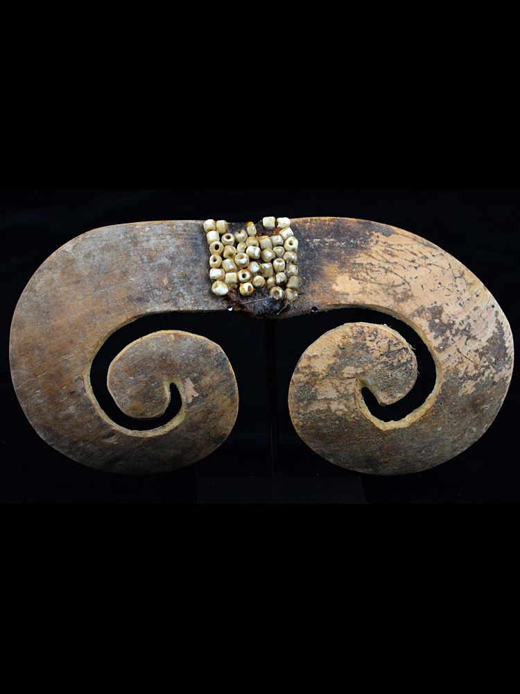 Very Old Shell Nose Piece, Asmat People – B16-5